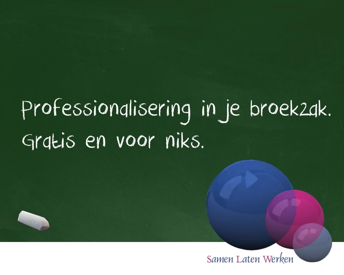 Professionalisering In Je BroekZak. Gratis En Voor Niks